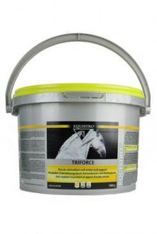 Equistro Triforce 1800G